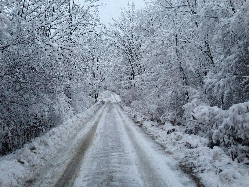 Snow day haiku contest…