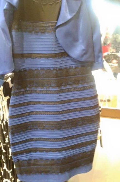 "The ""What Color is this Dress"" Debate"