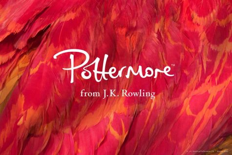 Learn Potter-more about yourself!