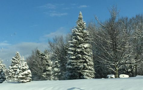 Out of the Blue: White Christmas